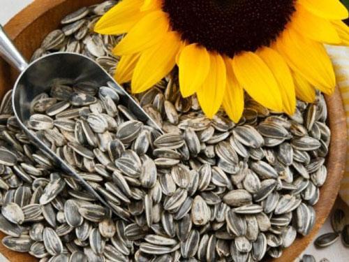 Vì sao nên ăn các loại hạt trong ngày tết?