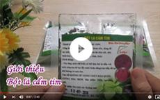 Giới thiệu về bột lá cẩm tím [video]